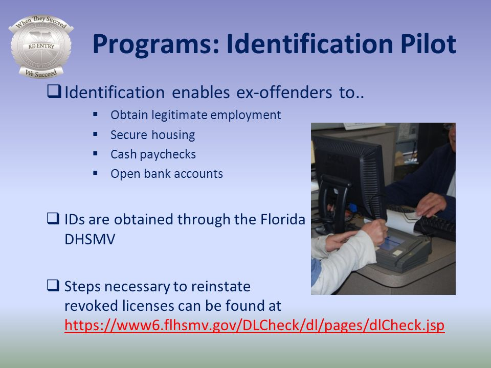 Programs: Identification Pilot