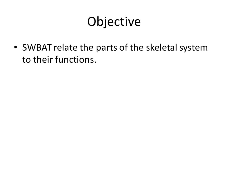 Objective SWBAT relate the parts of the skeletal system to their functions.