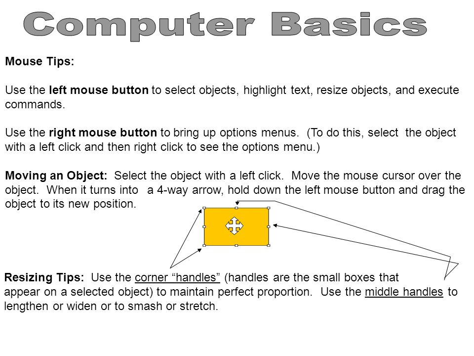 Computer Basics Mouse Tips:
