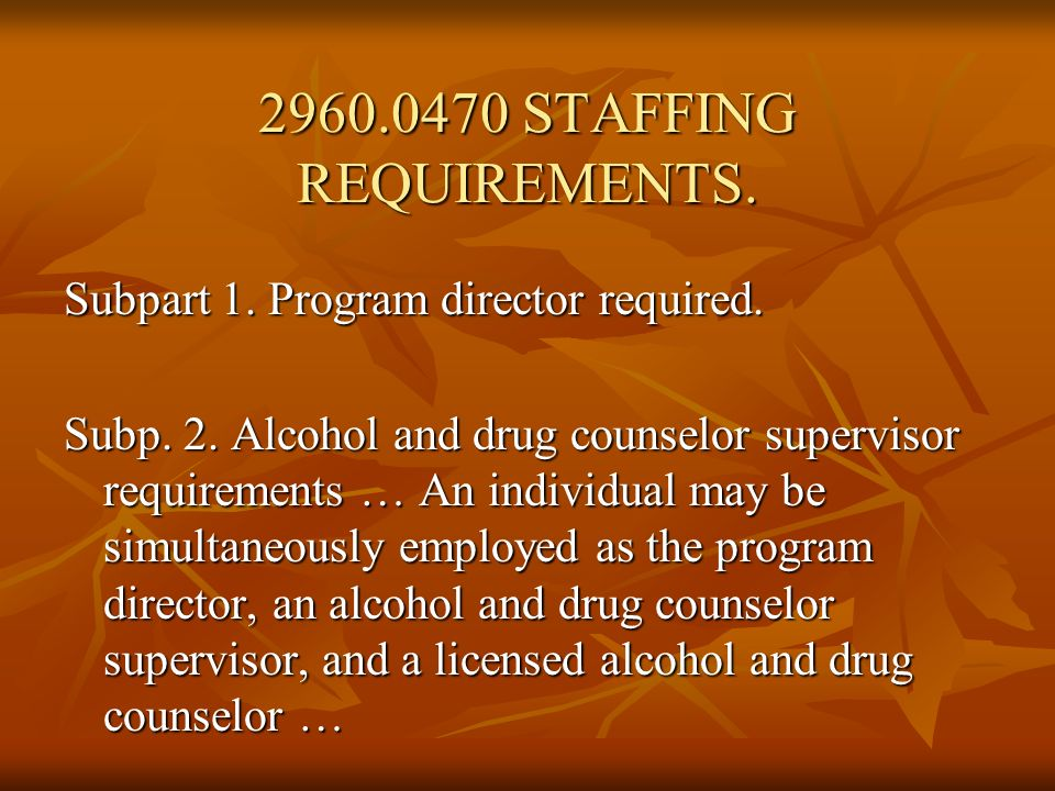 STAFFING REQUIREMENTS.