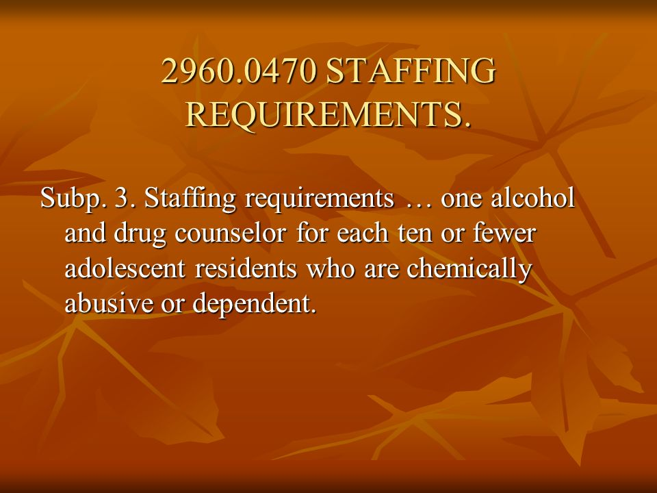 2960.0470 STAFFING REQUIREMENTS.