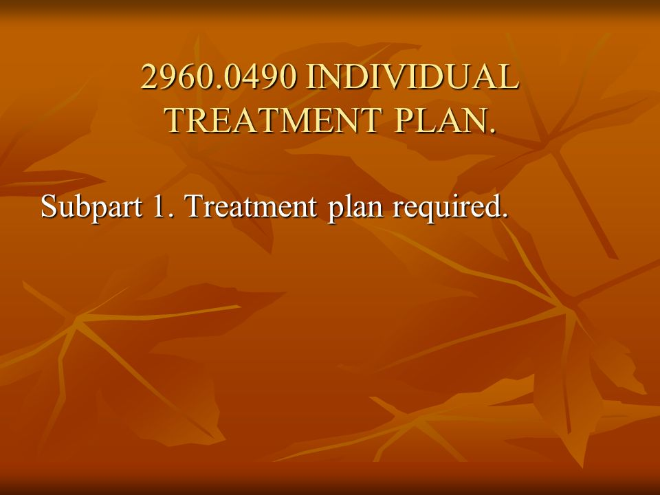 2960.0490 INDIVIDUAL TREATMENT PLAN.
