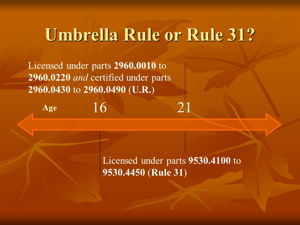 Umbrella Rule or Rule 31 Licensed under parts 2960.0010 to 2960.0220 and certified under parts 2960.0430 to 2960.0490 (U.R.)
