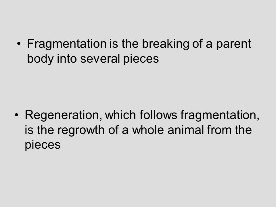 Fragmentation is the breaking of a parent body into several pieces