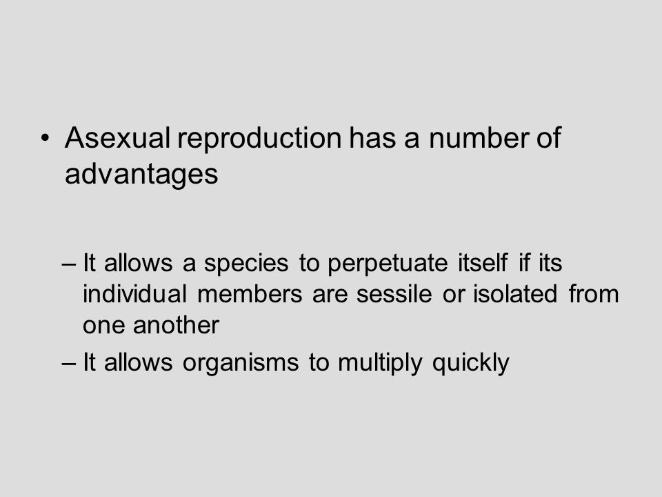 Asexual reproduction has a number of advantages
