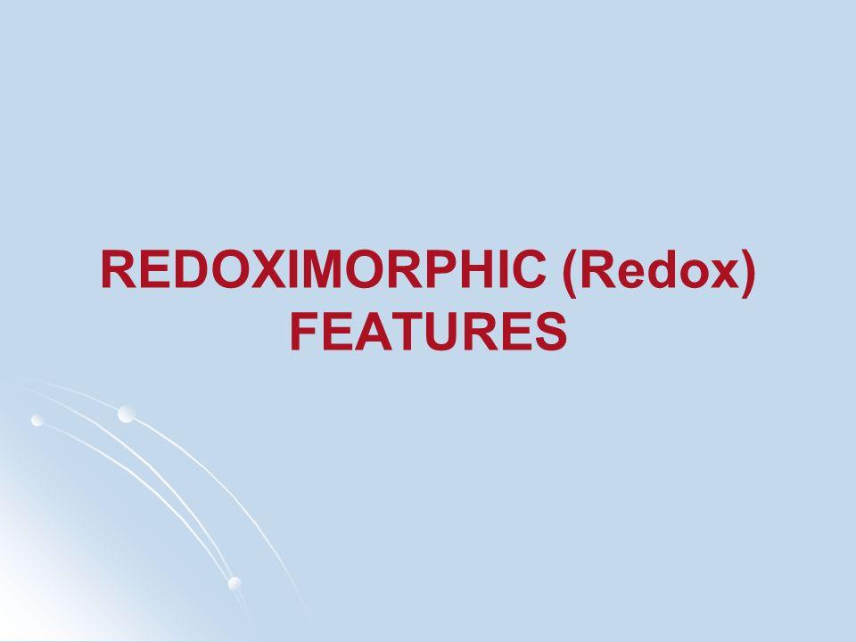 REDOXIMORPHIC (Redox) FEATURES