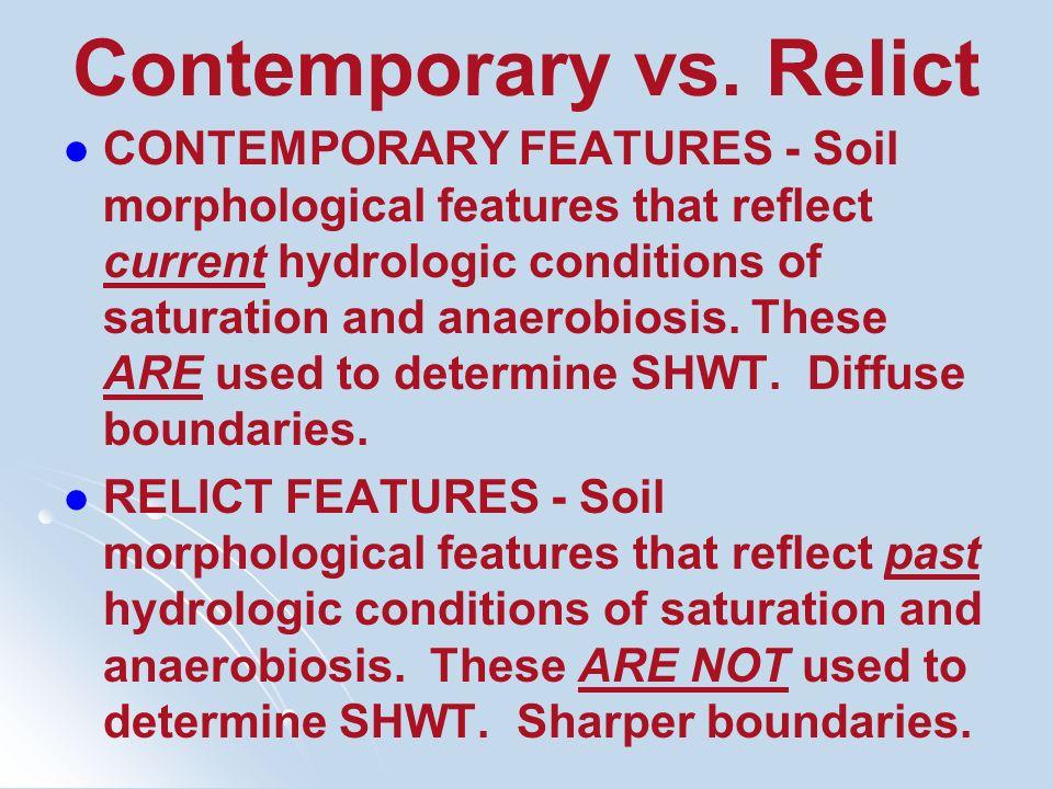 Contemporary vs. Relict