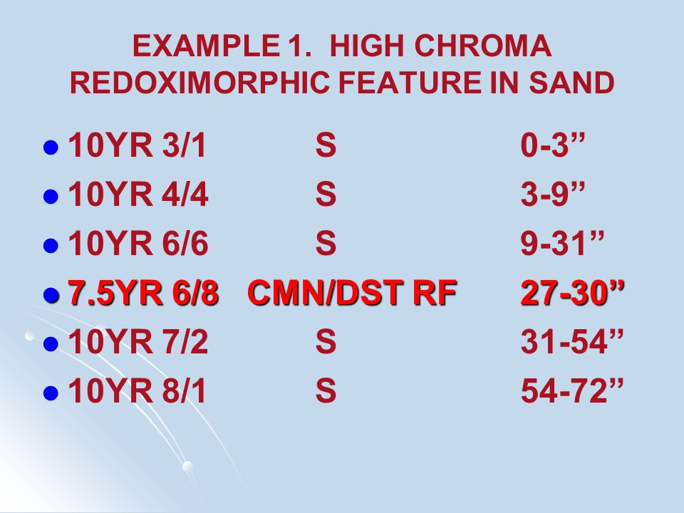 EXAMPLE 1. HIGH CHROMA REDOXIMORPHIC FEATURE IN SAND