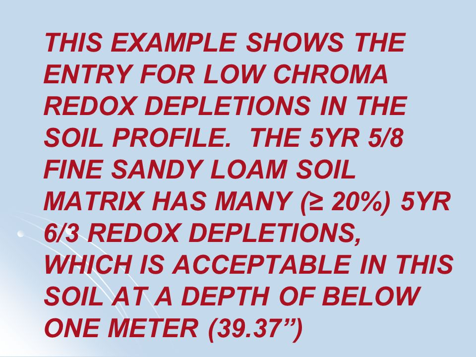 THIS EXAMPLE SHOWS THE ENTRY FOR LOW CHROMA REDOX DEPLETIONS IN THE SOIL PROFILE.
