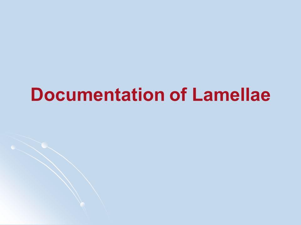 Documentation of Lamellae