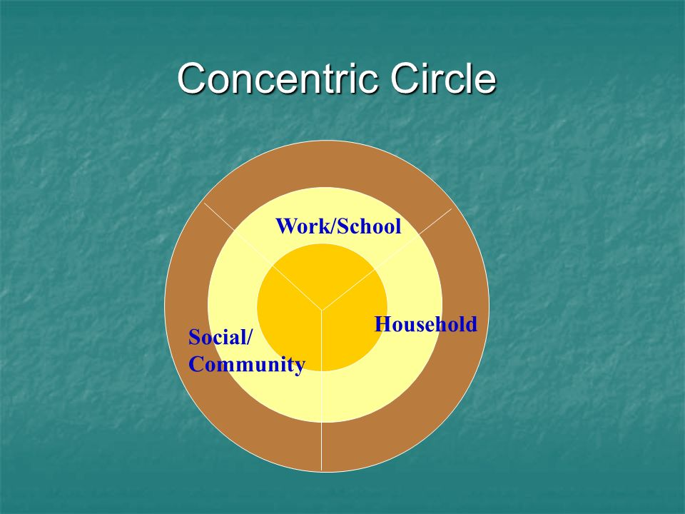 Concentric Circle Work/School Household Social/ Community