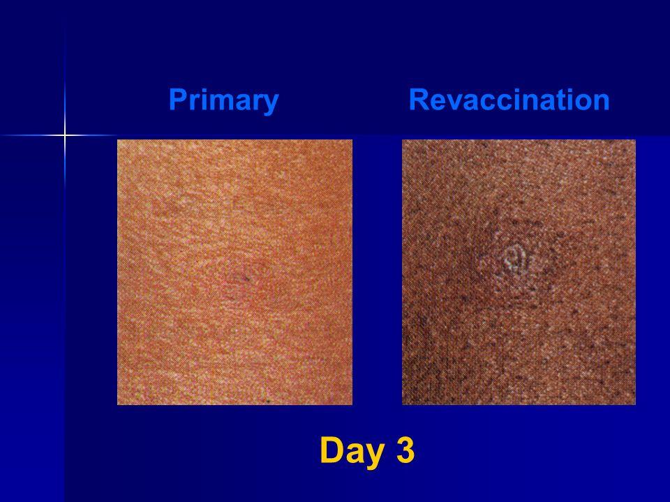 Primary Revaccination Day 3