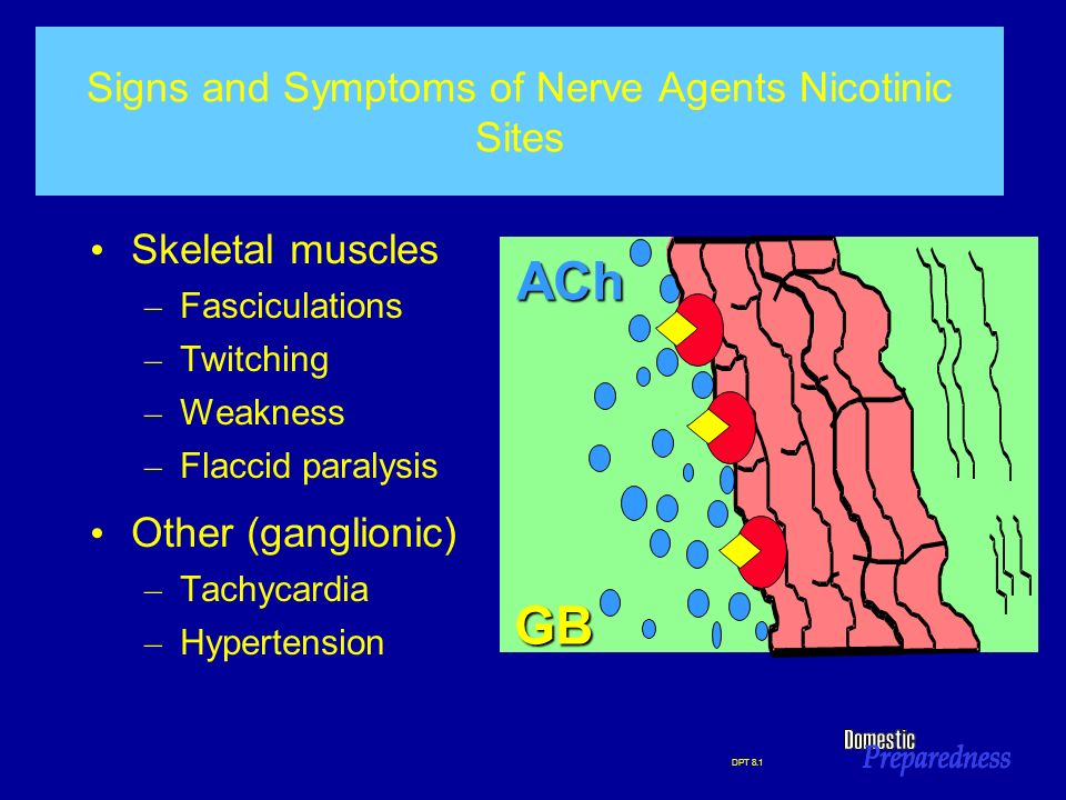 Signs and Symptoms of Nerve Agents Nicotinic Sites