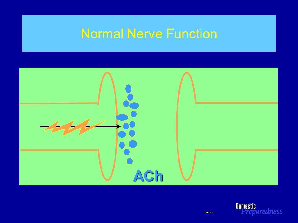 ACh Normal Nerve Function NORMAL NERVE FUNCTION