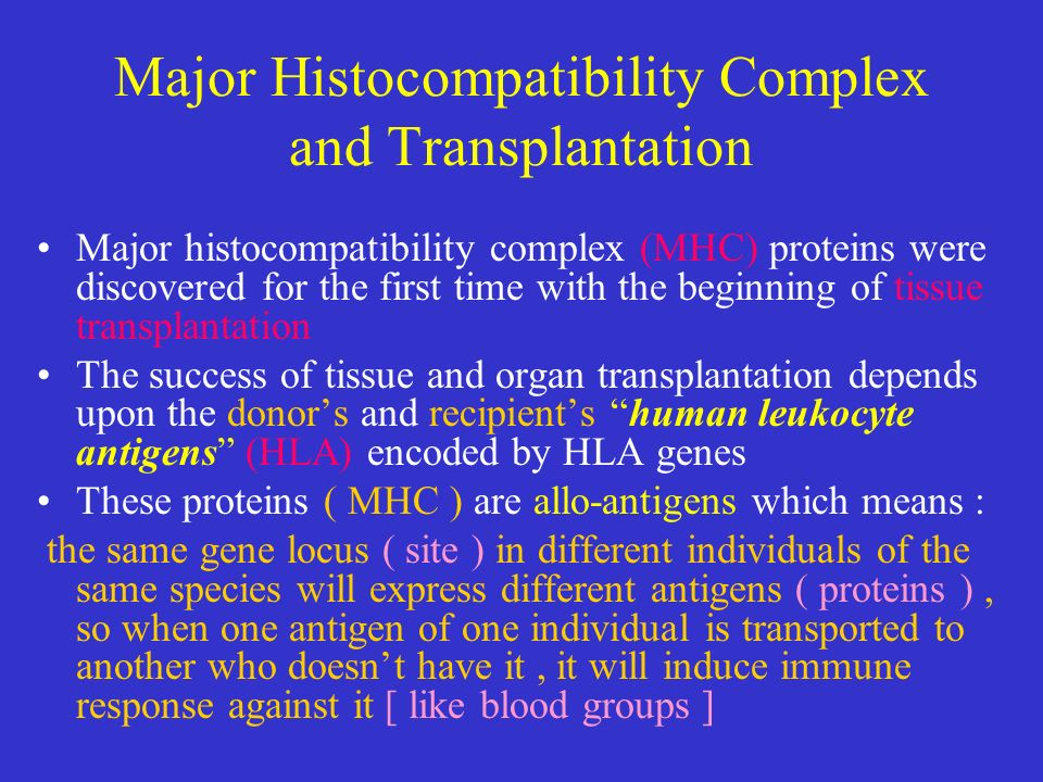 major histocompatapility complex essay 130 immunology questions and answers results 1 to 9 of 9 2likes top all b are controlled by several genes in the major histocompatibility complex.