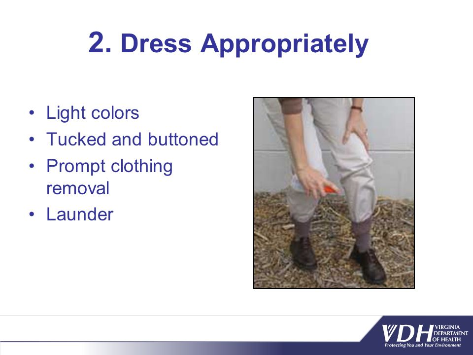 2. Dress Appropriately Light colors Tucked and buttoned