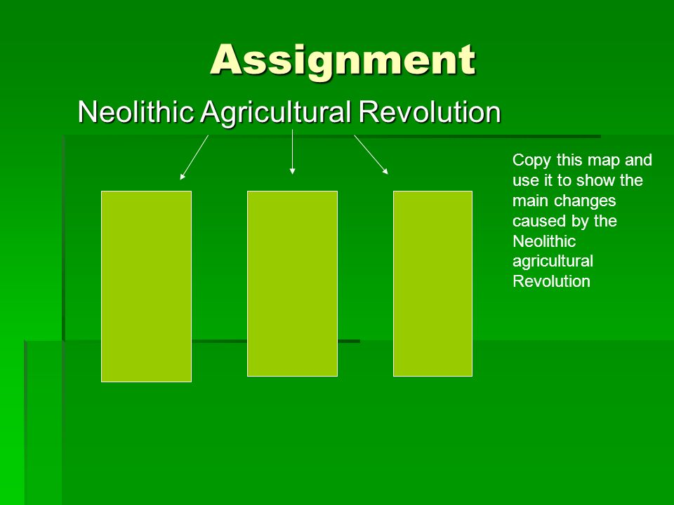 Assignment Neolithic Agricultural Revolution