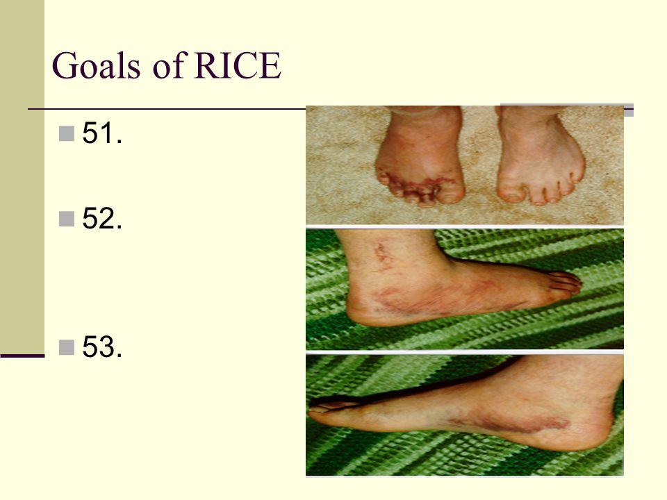Goals of RICE 51. 52. 53.