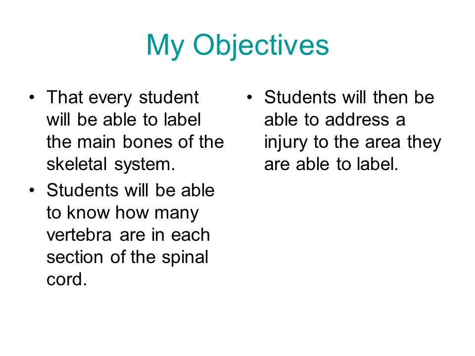 My Objectives That every student will be able to label the main bones of the skeletal system.