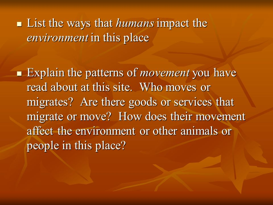 List the ways that humans impact the environment in this place