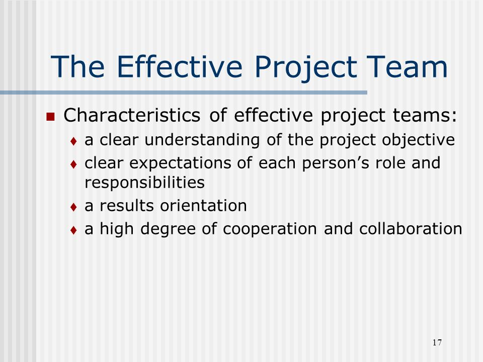 effective project team Members of a highly effective team should feed off each other's abilities and be able to build a relationship from the ground up here are some of the characteristics.