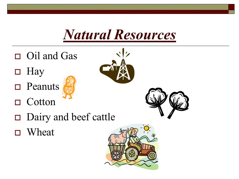 Natural Resources In Texas Central Plains