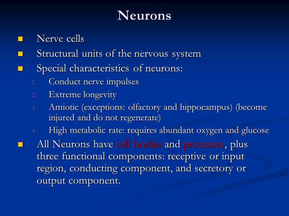 Neurons Nerve cells Structural units of the nervous system