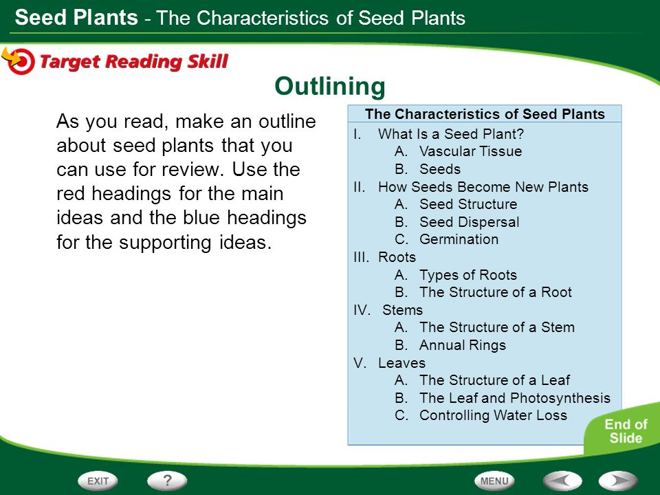 The Characteristics of Seed Plants