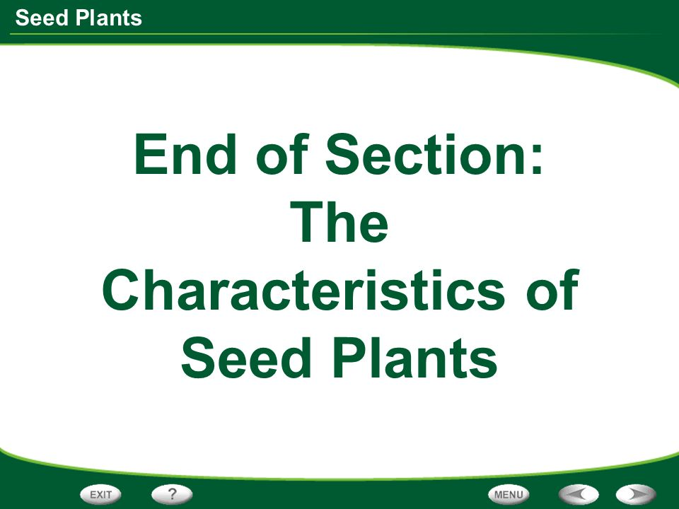 End of Section: The Characteristics of Seed Plants