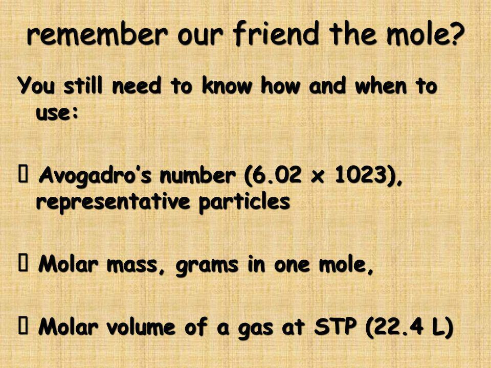 remember our friend the mole