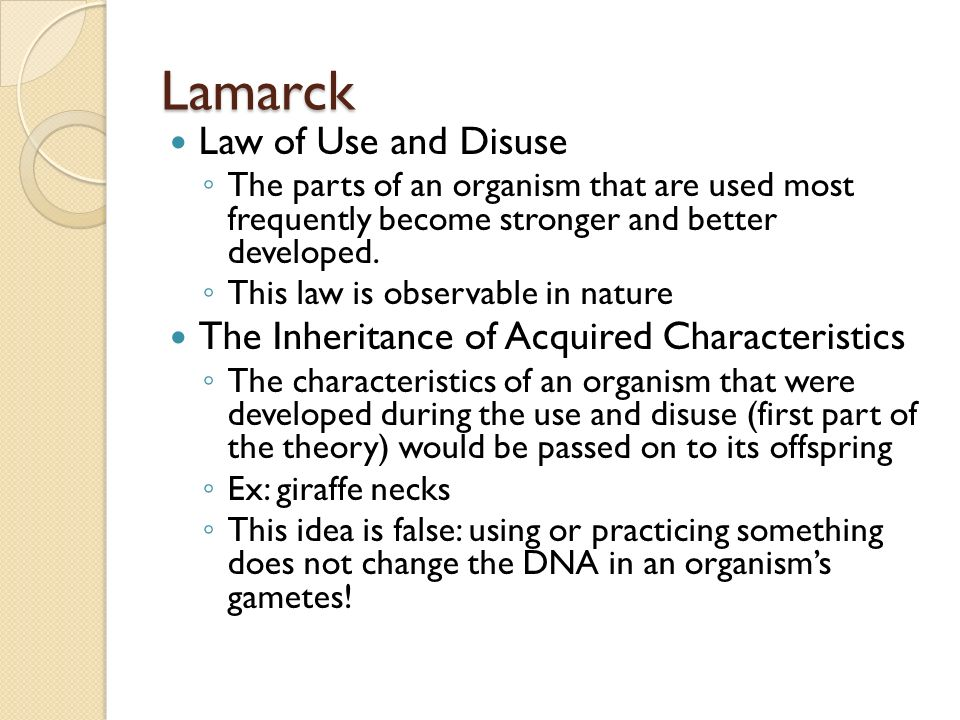 a description of the theory of evolution by lamarck History of evolutionary theory teacher sheet  explain lamarck's theory of use and disuse of  while biological evolution is a fact and the great diversity of.
