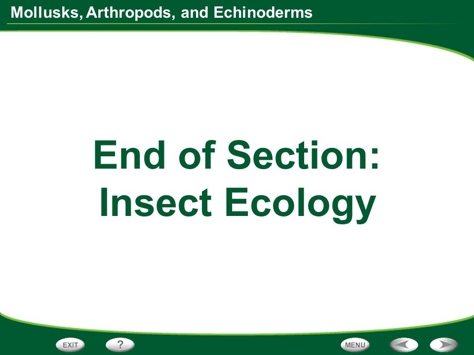 End of Section: Insect Ecology