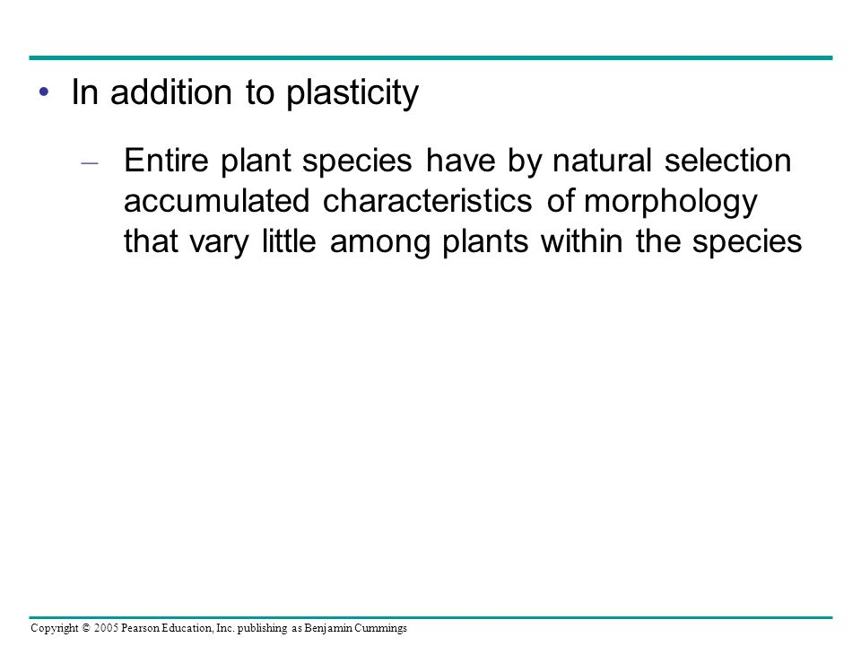 In addition to plasticity