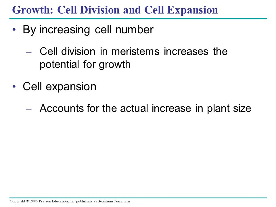Growth: Cell Division and Cell Expansion