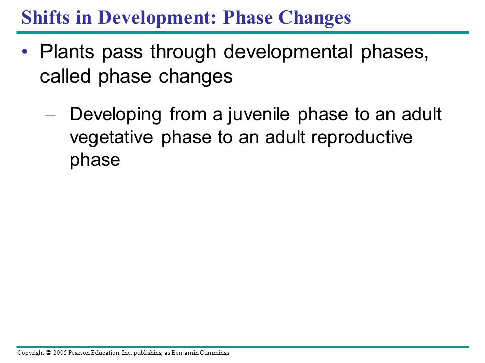 Shifts in Development: Phase Changes