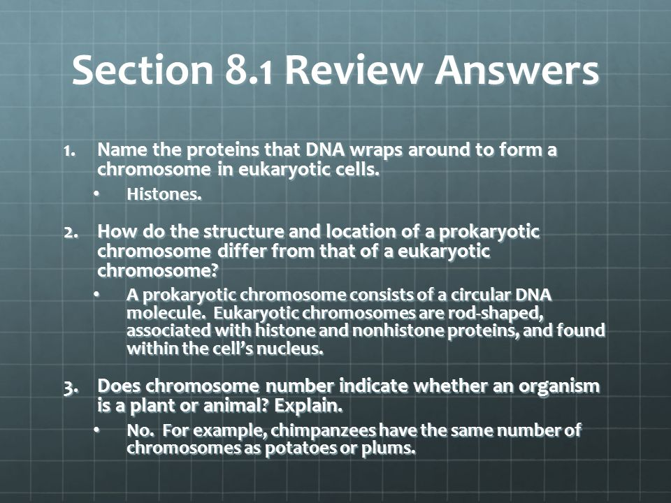 Section 8.1 Review Answers