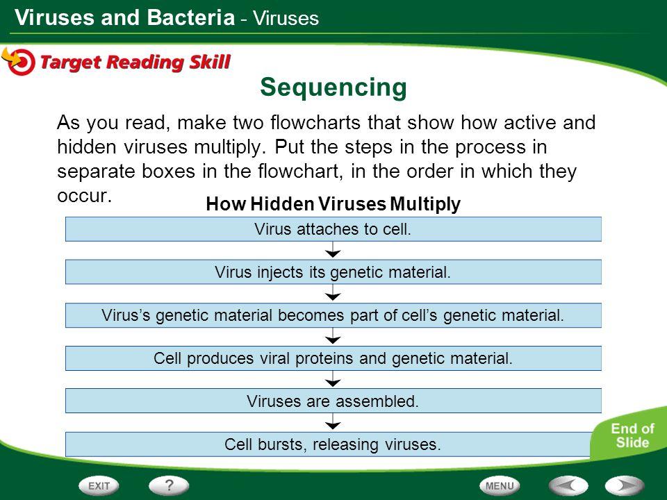 How Hidden Viruses Multiply