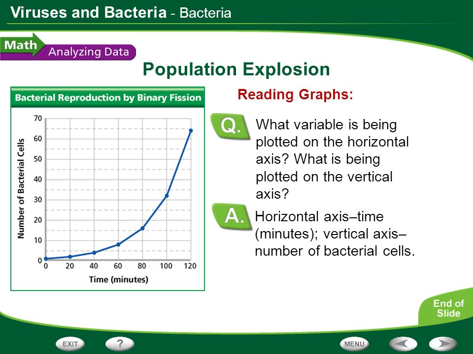 Population Explosion - Bacteria Reading Graphs: