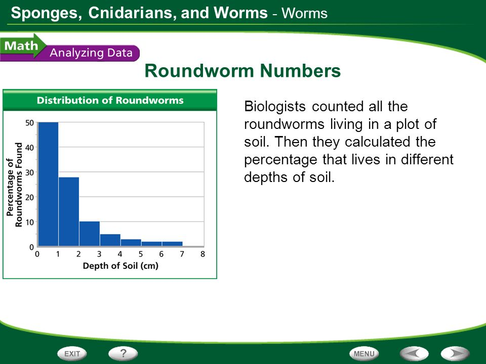 Roundworm Numbers - Worms