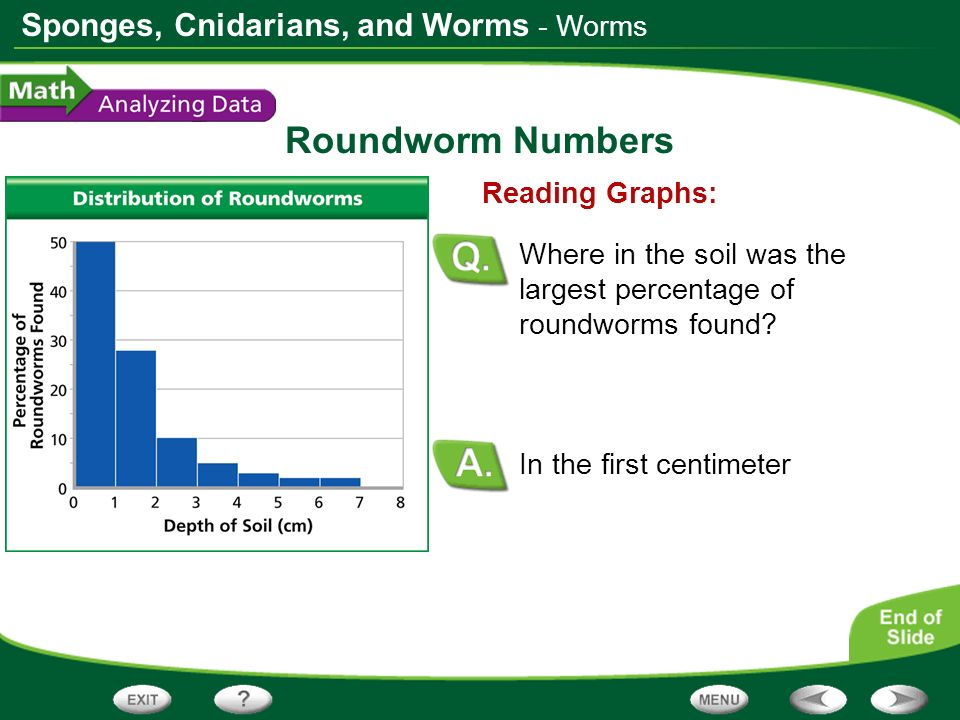 Roundworm Numbers - Worms Reading Graphs: