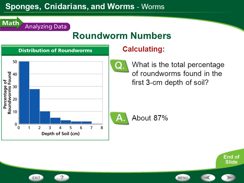 Roundworm Numbers - Worms Calculating: