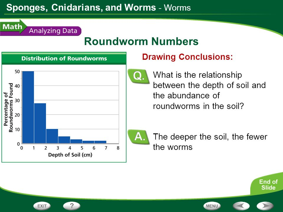 Roundworm Numbers - Worms Drawing Conclusions: