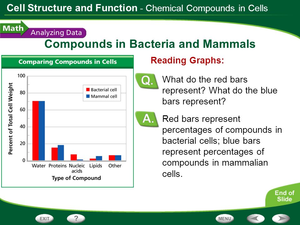 Compounds in Bacteria and Mammals