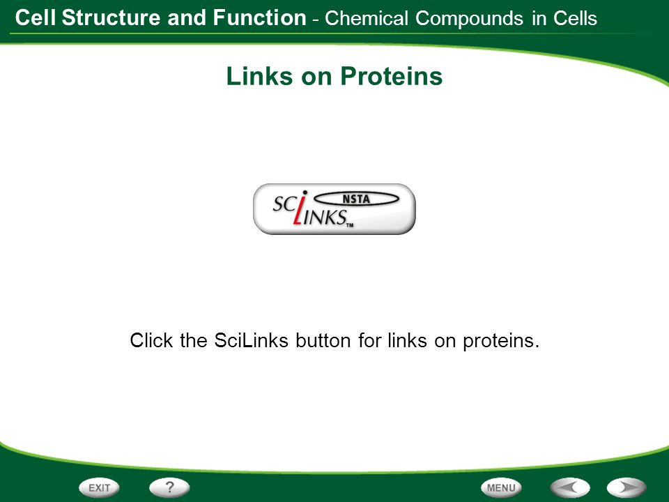 Click the SciLinks button for links on proteins.