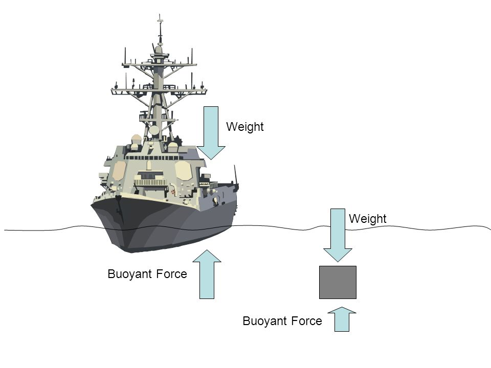 Weight Weight Buoyant Force Buoyant Force