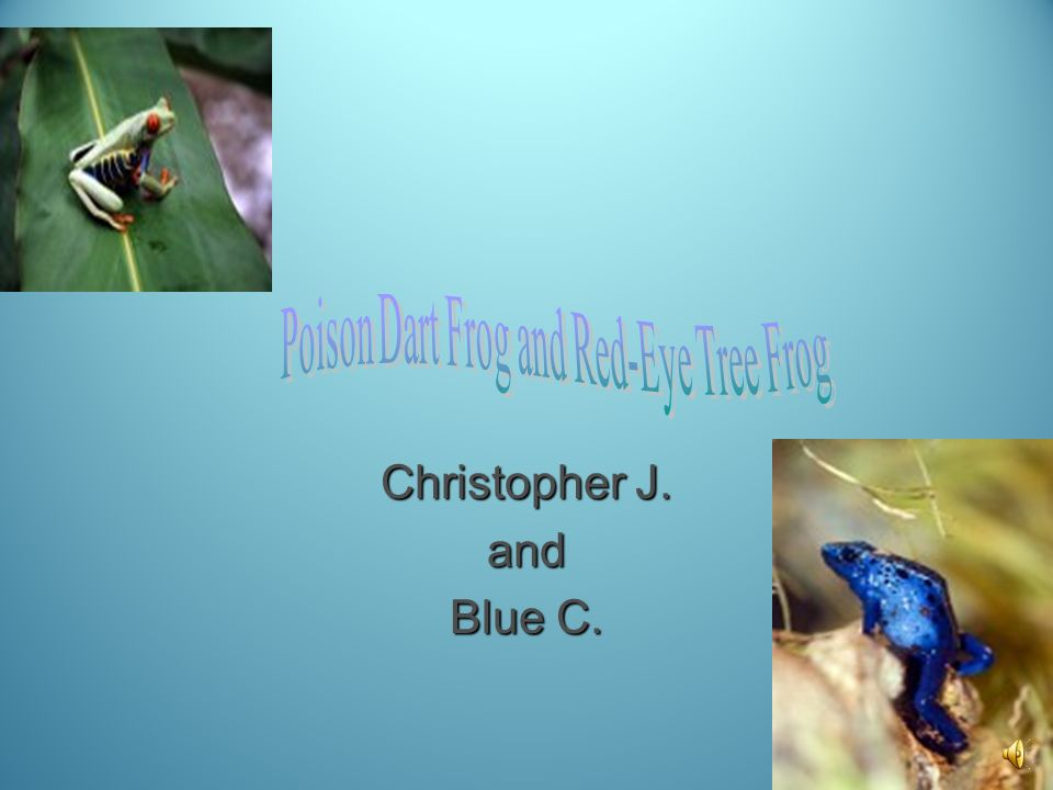 Christopher J. and Blue C.