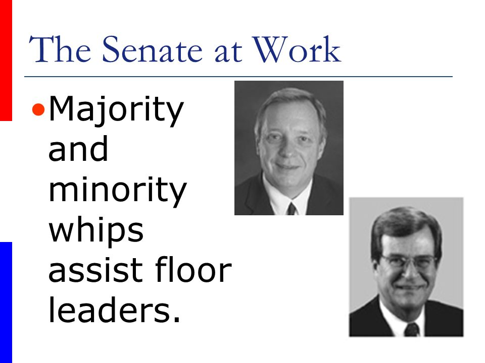 The Senate at Work Majority and minority whips assist floor leaders.