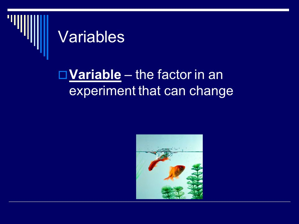 Variables Variable – the factor in an experiment that can change