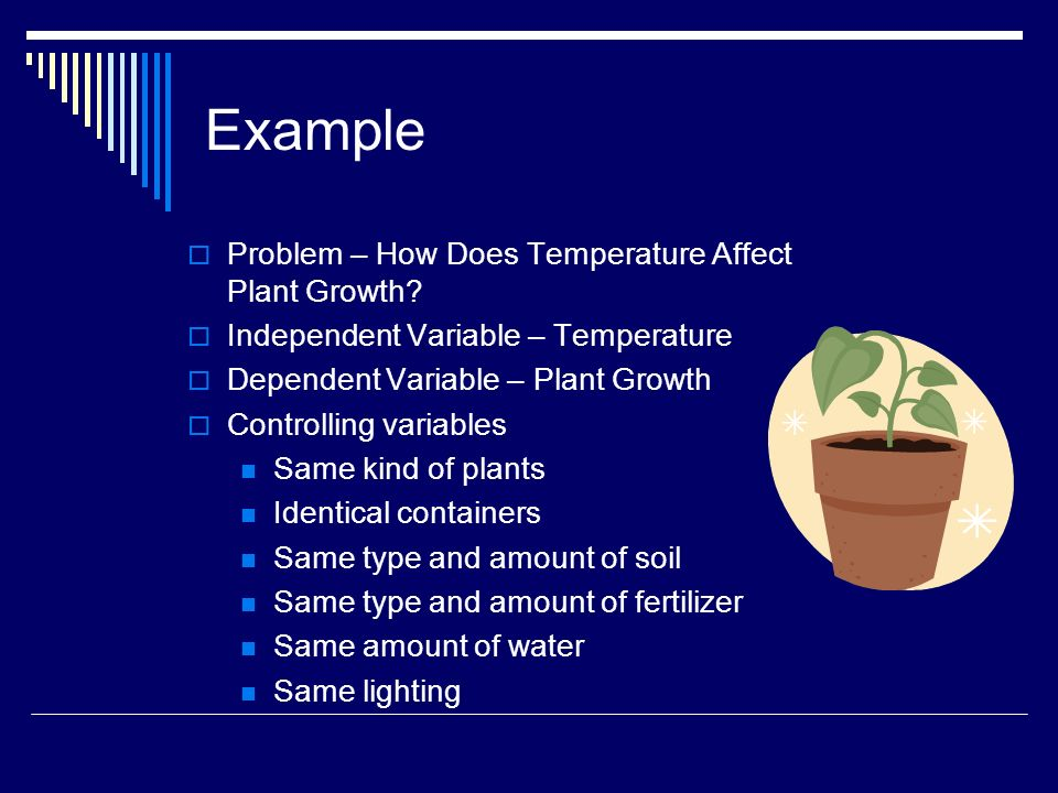 Example Problem – How Does Temperature Affect Plant Growth