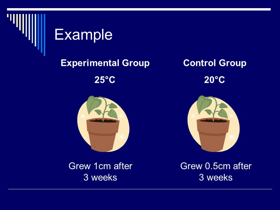 Example Experimental Group 25°C Control Group 20°C